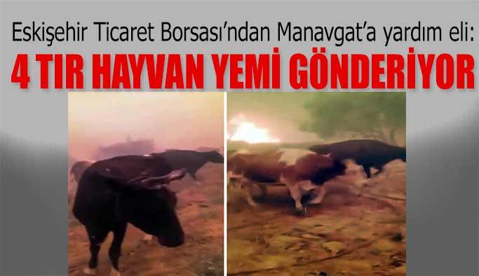 ETB Manavgat'a 4 tır hayvan yemi gönderiyor