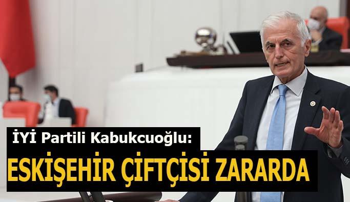 İYİ Partili Kabukcuoğlu:  Eskişehir çiftçisi zararda