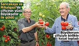 Büyükşehir'in domateslerinden çiftçiye 5 milyon gelir