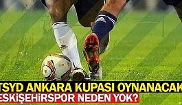 TSYD TURNUVASI ESKİŞEHİRSPOR'SUZ YAPILIYOR