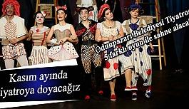 Odunpazarı Belediyesi Tiyatrosu 5 farklı oyun ile sahne alacak