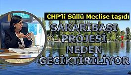 CHP'li Süllü: Eskişehir susuzluğa mahkum ediliyor
