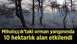 - Mihalıççık'taki orman yangınında soğutma çalışmaları sürüyor