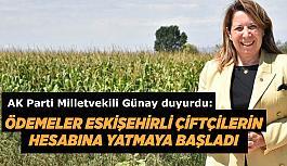 Prof. Dr. Emine Nur Günay'dan Tarım Destekleri müjdesi