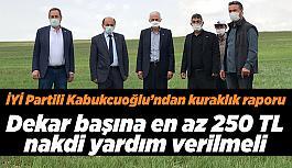 Kabukcuoğlu: Tarla ziraatı yapılan 12 ilçenin 9'unu ziyaret ettim.