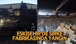 Eskişehir'de fabrika yangını korkuttu…