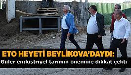 ETO heyeti Beylikova'yı ziyaret etti