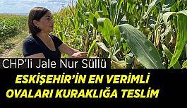 Süllü: Tarımsal üretim, iklim krizi gerçeğiyle yapılmalı